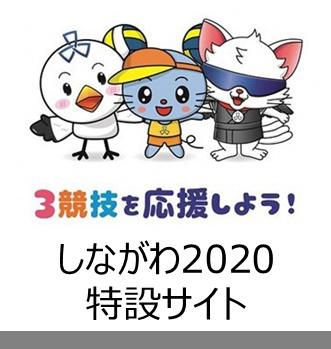 奥运会·残奥会特设网站