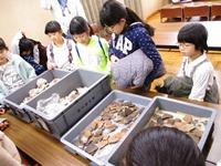 用文化遗产旅游看货真价实的土器